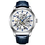 Pagani Design Automatic Watch Men Skeleton Mechanical Watches Orologi da polso impermeabili in pelle di lusso automatici