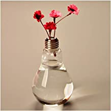 Flower Bottle Light Bulb Crystal Cutting Design Thick Glass with Dried Flowers (12 * 8cm)