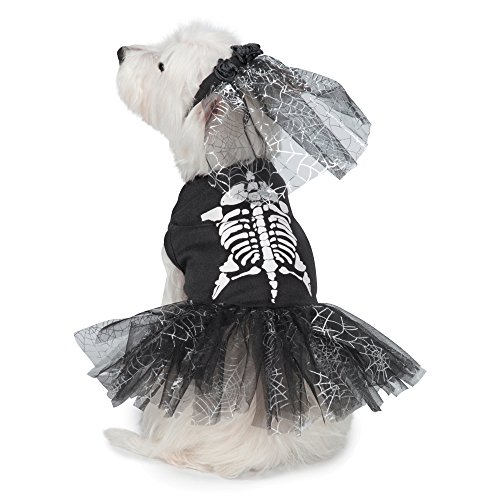 Casual Canine Glow-in-The-Dark Skeleton Dog Costume