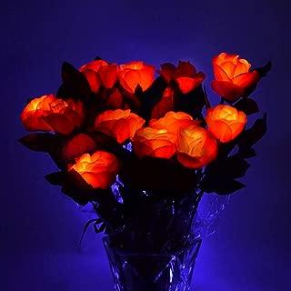 Best light up roshes Reviews