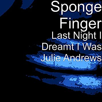 Last Night I Dreamt I Was Julie Andrews