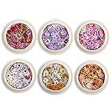 6box Nail Nail Flower Seck Set Mini Natural Real Dry Flowers Flores Apliques para Arte del Nail Decoration Fingernails Pegatina
