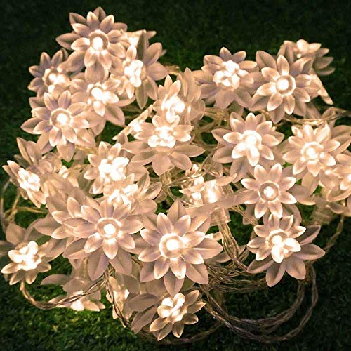 echosari LED String Lights 4M/13feet 40 LED Lotus Flower for Chrismas, Party, Wedding, Indoor, Garden Décor (Warm White)