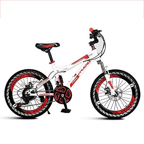 TOIMSA Speed RCG 3-5 a/ños Bicicleta de 12 Pulgadas
