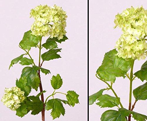 Kunstblume Schneeball Viburnum mit grünen Blüten, Gesamthöhe inkl. Stiel ca. 40cm - Kunsblumen künstliche Blumen Kunstpflanzen künstliche Pflanzen Blumen