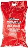 Wilson Tennisbälle Team Trainer, gelb, Beutel mit...
