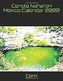 Cenote Naharon Mexico Calendar 2022