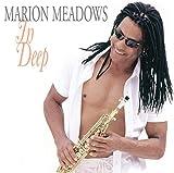 Songtexte von Marion Meadows - In Deep