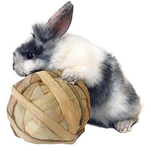 Welltobuy Naturale Erba Sfera Pet Giocattolo da Masticare per Coniglio Criceto Parrot roditori Giocare Giocattolo Denti Pulizia (Diametro 10cm)