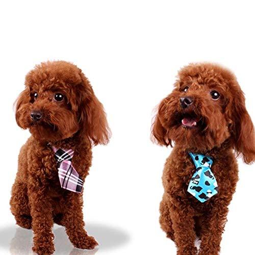 Accrie - Corbata de Lazo Ajustable para Perro, Gato, Cachorro ...