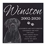 Lara Laser Works Personalized Dog Memorial with Photo Free Engraving MDL1 Customized Grave Marker | 6x6