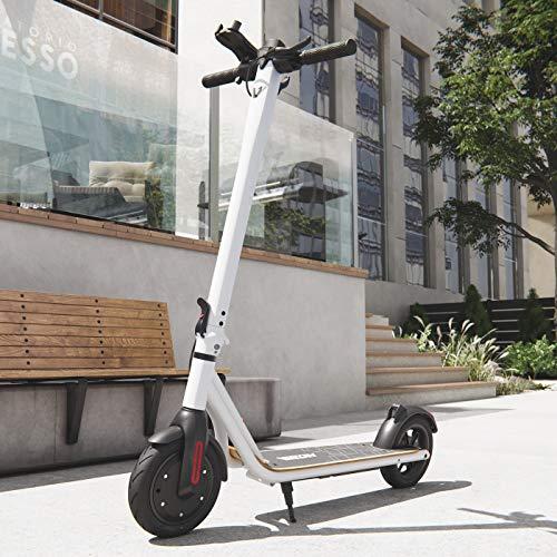Viron Elektro Scooter 700 W Escooter mit APP & Bluetooth Roller Elektroroller Faltbar Aluminium E-Scooter (Weiss)