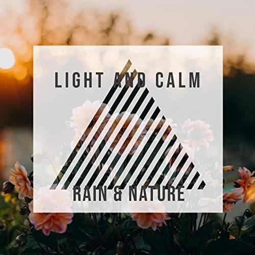 Light and Calm Rain & Nature, Vol. 3