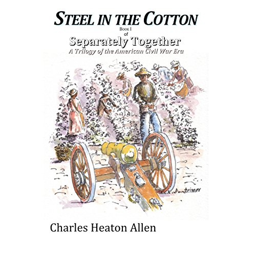 Steel in the Cotton audiobook cover art