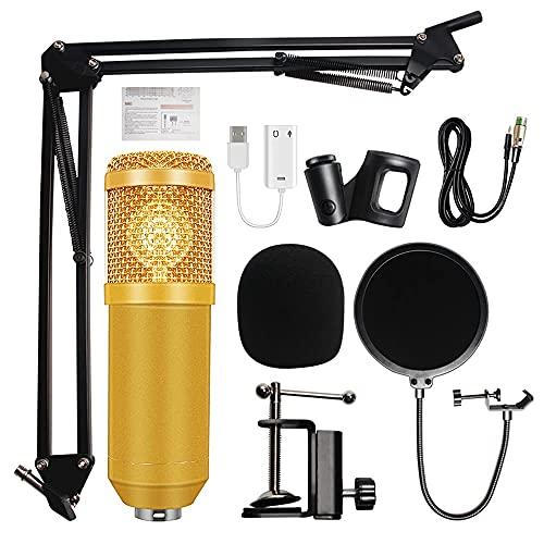 KELITINAus Micrófono Profesional de Micrófono con Condensador Bm800 Micrófono de Estudio de Brazos de Tijera Ajustable Tasa de Muestreo Alta Adecuada para Grabación de Video Que Canto de Youtube,Dora