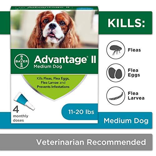 Flea and Lice Treatment for Dogs, 11-20 lb, 4 doses, Advantage II