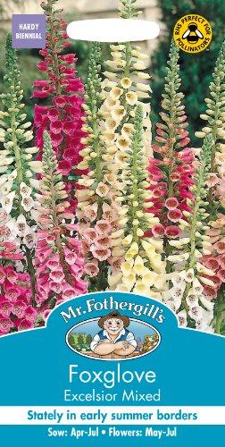 Mr. Fothergill's 14232 Excelsior Samen, für Fingerhut, gemischt, abgezählt, 2500 Stück