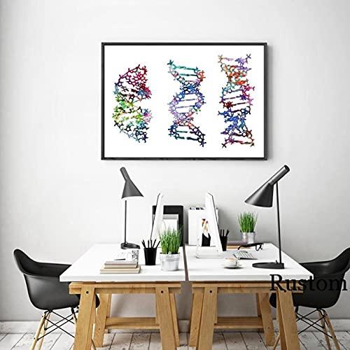 Pknbfw Pinturas químicas para citas interiores, carteles e impresiones de lienzo de ADN para la imagen de la sala de estar para el diseño del hogar -50x70cm sin marco