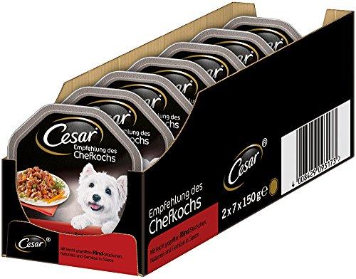 Cesar, Cibo Umido per Cani, consigliato da Chef, in Diversi Gusti, per 14 pasti (14 x 150 g)