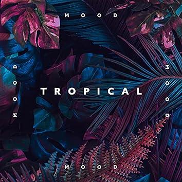 Tropical Mood: Hawaiian Music for Spa, Morning Meditation and Deep Relaxation