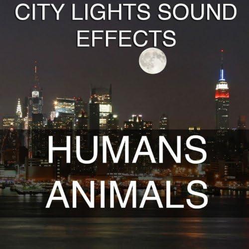 City Lights Sound Effects