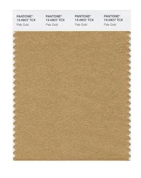PANTONE Smart 15-0927X Color Swatch Card Pale Gold