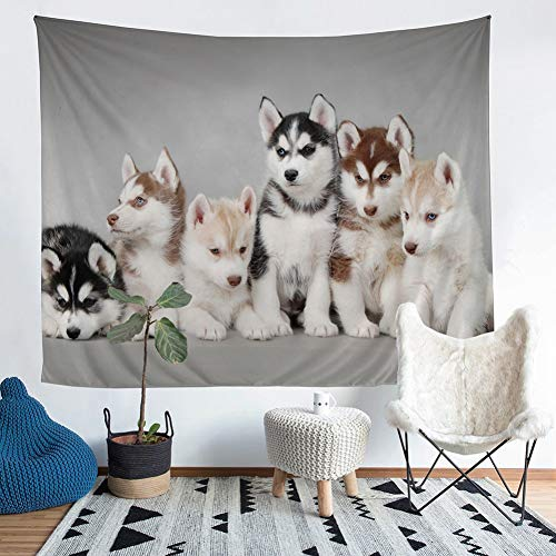 ZSYNB Wandtapijt A Home Furnishing Siberian Husky Wandtapijt Wandkleed Sandy Beach picknick werp tapijt plafond camping tent isomat No frame 150 x 130 cm.