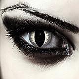 """Designlenses, Dos lentillas de colores gris para Halloween costume ojo de gato/dragón lentes de tres meses sin dioprtías/corregir + gratis caso de lente """"Grey Cateye'"""