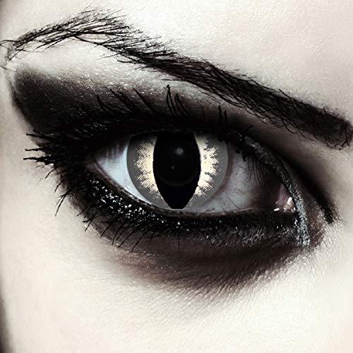 """Designlenses, Dos lentillas de colores gris para Halloween costume ojo de gato/dragón lentes de tres meses sin dioprtías/corregir + gratis caso de lente """"Grey Cateye"""