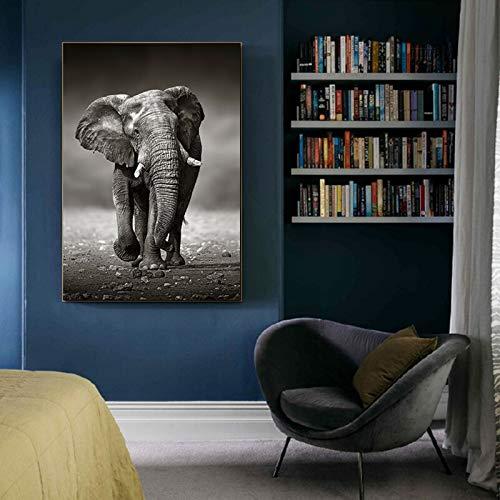 wZUN Animal Abstracto Arte Mural Elefante Cartel Cartel Sala de Estar Dormitorio decoración Arte Pared Imagen Arte 50x70 cm