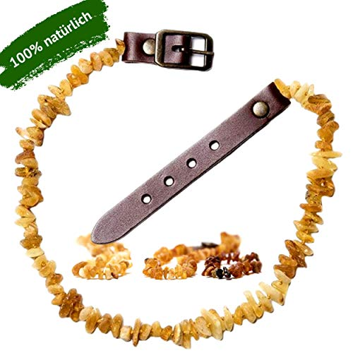 ChronoBalance® Bernsteinkette für Hunde - natürlicher Zeckenschutz - Bernstein-Halsband gegen Flöhe - verstellbar, Verschiedene Größen