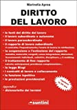 Diritto del Lavoro (100 pagine) (Italian Edition)