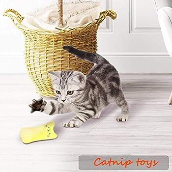 Jouet en peluche Catnip, nettoyage des dents de chat, oreiller Creative Scratch Pet Catnip dents broyage Jouets Chew (5pcs / set)