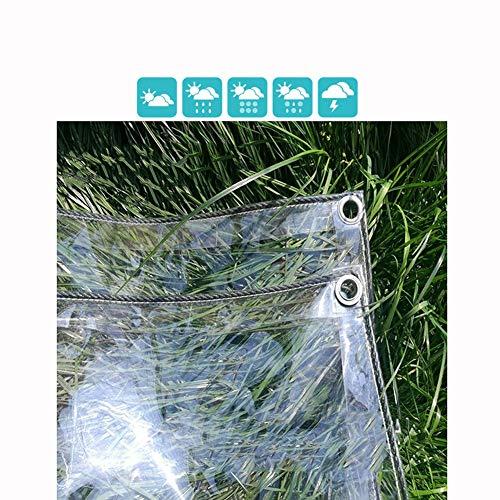 GDMING Klar Glas Plane Gewebeplane Abdeckplane Verstärkte Ösen Draussen Balkon Pflanze Schutz Regenfest Anti-UV Frostschutzmittel Verdicken 0,5 Mm PVC, 14 Größen (Color : Clear, Size : 2.4X 6m)