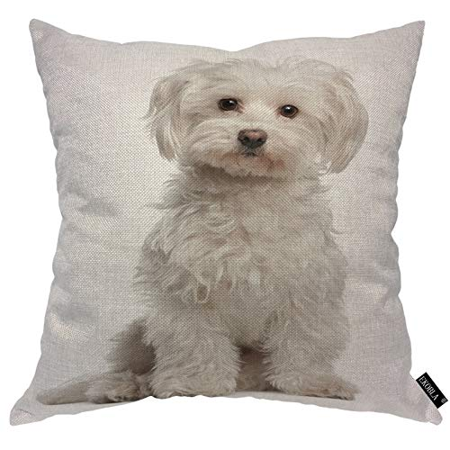 EKOBLA Cute Dog Throw Pillow Cover Maltese Fur Canine Domestic Animal White Purebred Mammal Portrait Cozy Square Cushion Case for Men Women Boys Girls Room Home Decor Cotton Linen 18x18 Inch