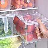 Leijing Boîte de Rangement pour Réfrigérateur Bac Organisateur Frigo, avec Couvercle et Poignée (1 Pièce)
