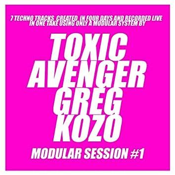 Modular Session #1