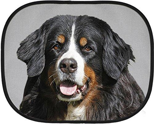 BERNER Sennenhund - Auto-Sonnenschutz, 2 Saugnäpfe, 44 x 38 cm, Einzelstück - BNS 01