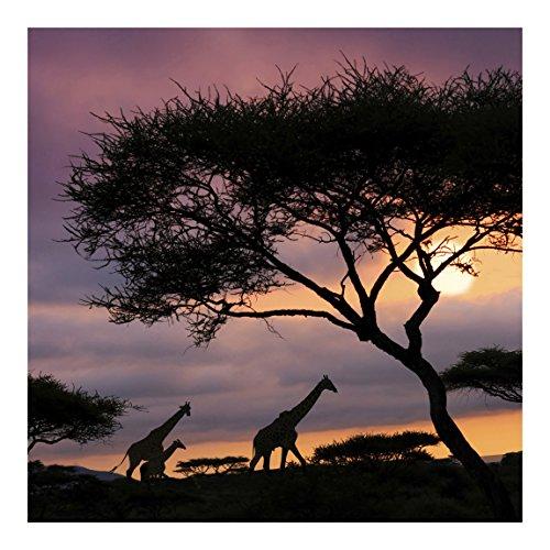 Vliestapete Safari in Afrika Premium, HxB: 192cm x 192cm