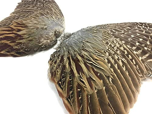 Pheasant Feathers 1 Pair of Ringneck Pheasant Complete Wing Feathers product image