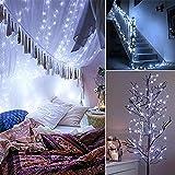 Luces de guirnalda de cuento de hadas LED luces de cadena LED alimentadas por batería, utilizadas para Navidad, bodas, fiesta de cumpleaños decoración navideña Batería 2m20 leds
