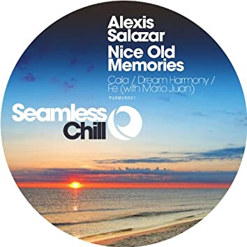 Nice Old Memories (Seamless Chill)
