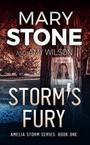 Storm's Fury (Amelia Storm FBI Mystery Series Book 1)
