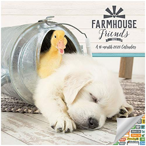 Farm Animals Calendar 2020 Set - Deluxe 2020 Farmhouse Friends Mini Calendar with Over 100 Calendar Stickers (Barn Animals Gifts, Office Supplies)