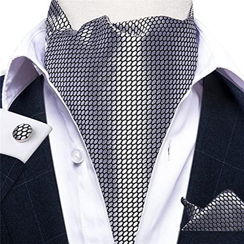 DYXYH Hombres Vintage Silver Body Formal Cravat Scrunch Spunch Style Gentleman Silk Necktie con Broche (Color : Silver, Size : One Size)