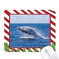 海座頭魚の科学は自然の写真 ゴムクリスマスキャンディマウスパッド