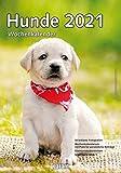 Wochenkalender Hunde 2021