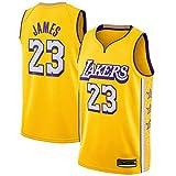 xiaotianshi Men's NBA Basketball Jersey Los Angeles Lakers # 23 Lebron James Transpirable Resistente al Desgaste Malla Bordada Camiseta de Baloncesto Deportes Camisetas Jerseys,XL