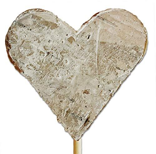 DeCoBurg - Velas Decorativas (Corteza de Abedul, tamaño XXX), Beige, 5 cm Am Stab | 20 Stück