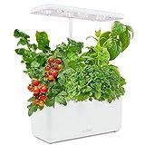 Ivation 7-Pod Indoor Herb Garden Kit, Hydroponic Germination System...